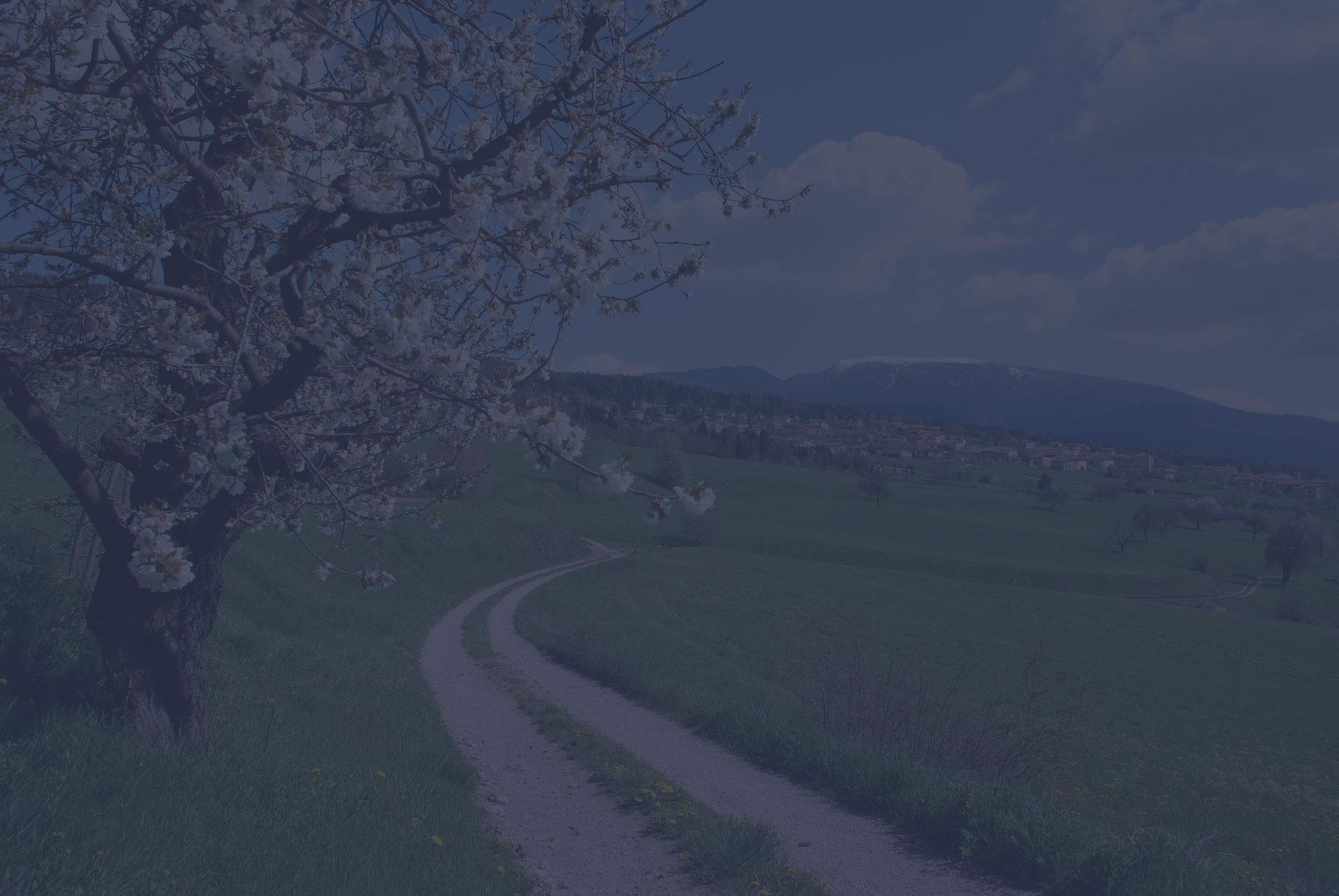 Immagine campagna slider homepage - Comocalor teleriscaldamento a Como